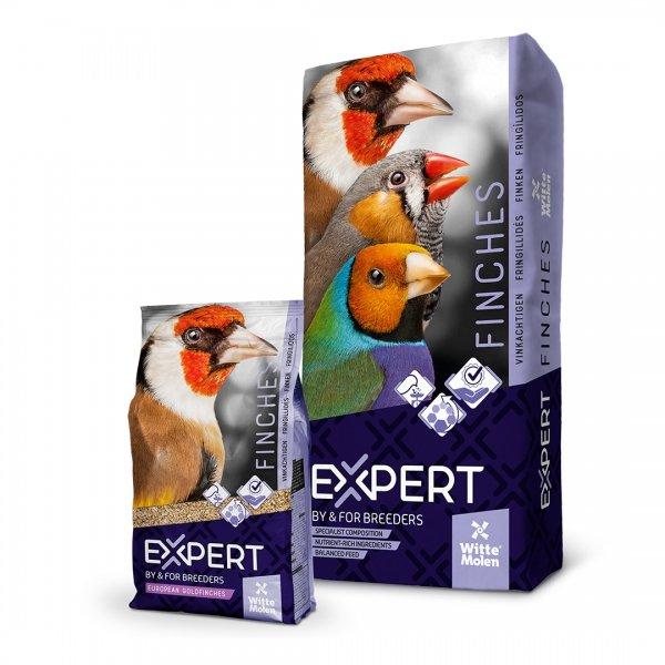 EXPERT Putters